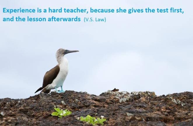 """""""L'expérience est une dure école : elle donne l'examen d'abord, la leçon ensuite"""""""
